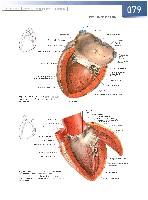 vérvizsgálati mutatók magas vérnyomás esetén magas vérnyomás pokol