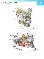 Sobotta Atlas of Human Anatomy  Head,Neck,Upper Limb Volume1 2006, page 108