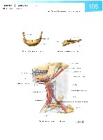 Sobotta Atlas of Human Anatomy  Head,Neck,Upper Limb Volume1 2006, page 112