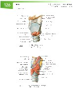 Sobotta Atlas of Human Anatomy  Head,Neck,Upper Limb Volume1 2006, page 133