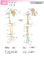 Sobotta Atlas of Human Anatomy  Head,Neck,Upper Limb Volume1 2006, page 15