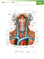 Sobotta Atlas of Human Anatomy  Head,Neck,Upper Limb Volume1 2006, page 156