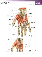 Sobotta Atlas of Human Anatomy  Head,Neck,Upper Limb Volume1 2006, page 216