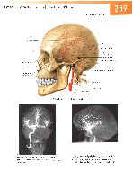 Sobotta Atlas of Human Anatomy  Head,Neck,Upper Limb Volume1 2006, page 266