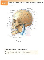 Sobotta Atlas of Human Anatomy  Head,Neck,Upper Limb Volume1 2006, page 267