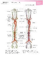 Sobotta Atlas of Human Anatomy  Head,Neck,Upper Limb Volume1 2006, page 34
