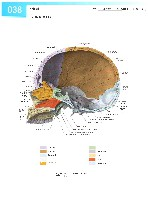 Sobotta Atlas of Human Anatomy  Head,Neck,Upper Limb Volume1 2006, page 45