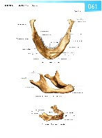 Sobotta Atlas of Human Anatomy  Head,Neck,Upper Limb Volume1 2006, page 68
