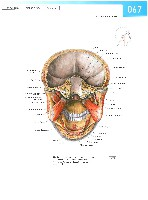 Sobotta Atlas of Human Anatomy  Head,Neck,Upper Limb Volume1 2006, page 74