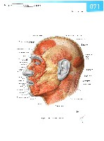 Sobotta Atlas of Human Anatomy  Head,Neck,Upper Limb Volume1 2006, page 78