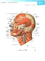 Sobotta Atlas of Human Anatomy  Head,Neck,Upper Limb Volume1 2006, page 80