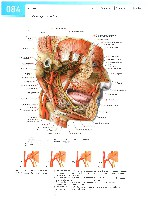 Sobotta Atlas of Human Anatomy  Head,Neck,Upper Limb Volume1 2006, page 91